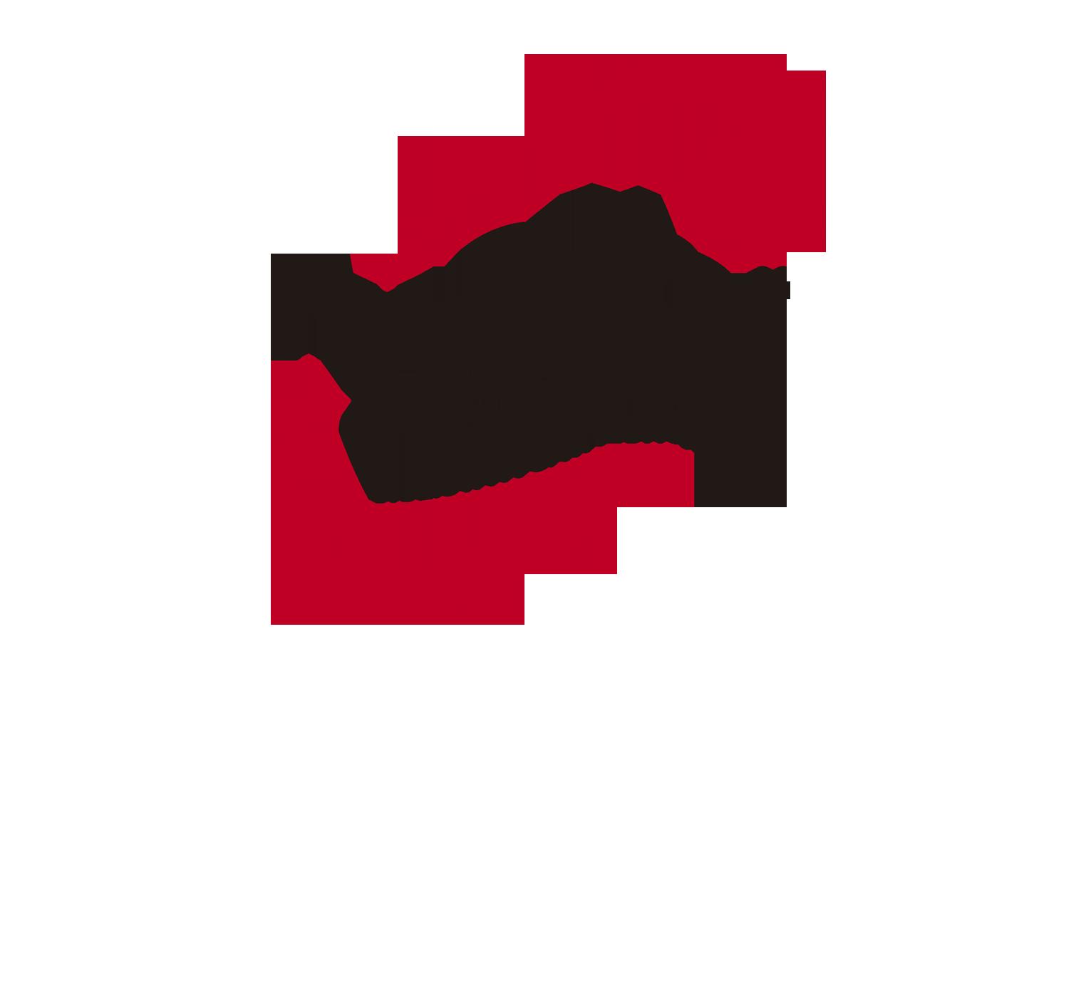 LOGO_VOLTA_OFICIAL copia